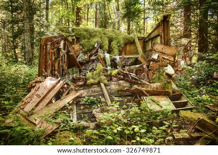 An old forest shack has been abandoned in a forest and has collapsed as it slowly rots in the rain forests of Washington State. - stock photo