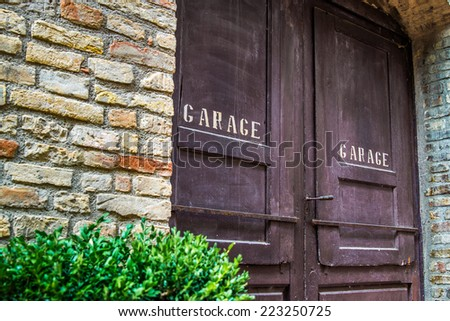 An old garage wooden door with a green plant in the front - stock photo