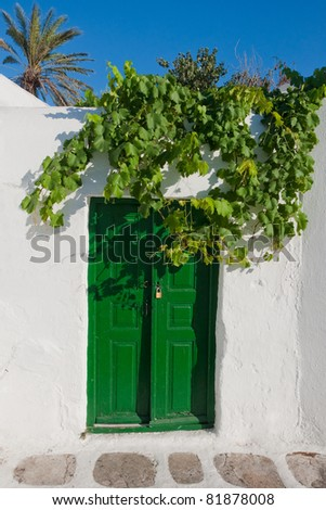 An old green door and a branch of grapes against a blue sky - stock photo