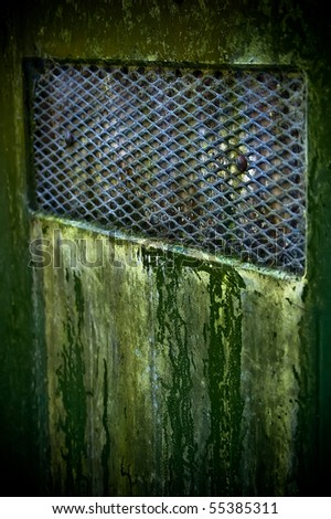 An old green door covered in mold. - stock photo