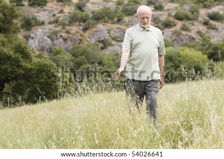An Old Man Walking in the Outdoors and Touching the Tall Grass - stock photo