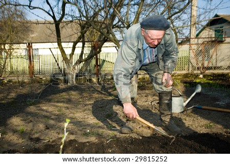 An  old peasant cultivating the soil in his kitchen garden