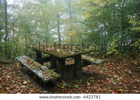 An old picnic table