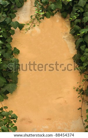 An old wall with ivy forming a border around the edges.  Space in the middle for copy. - stock photo