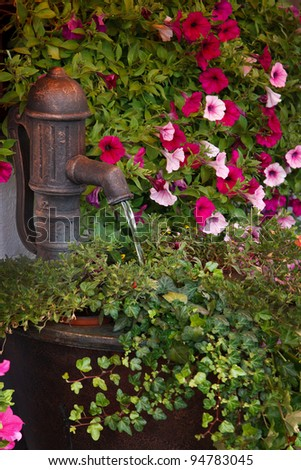 An old water pump with water flowing out of it is surrounded by pink flowers and greenery - stock photo