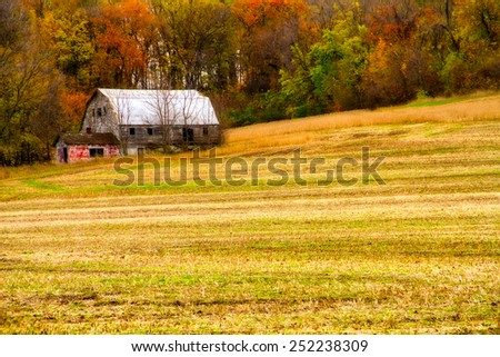 An old weathered barn in a field in the fall time.