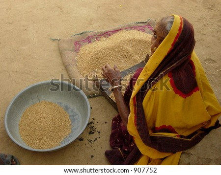 an old woman cleaning food grain in a village in india - stock photo