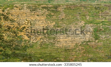An old wooden surface with flaked paint as abstract background. - stock photo