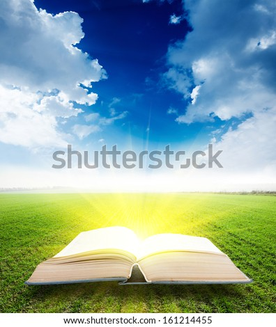 An open Bible in the grass - stock photo