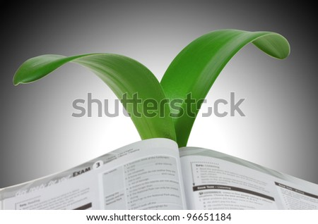 An open book to the growing leaves of lily isolated on gray  background - stock photo