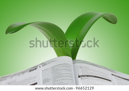 An open book to the growing leaves of lily isolated on green  background - stock photo