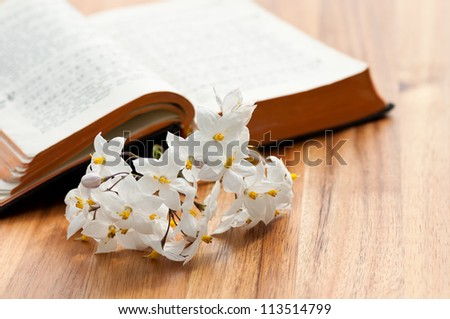 An open prayerbook with some flowers on a wooden table - stock photo