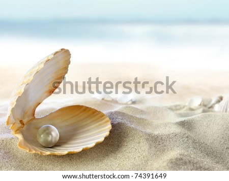An open shell with a pearl. - stock photo
