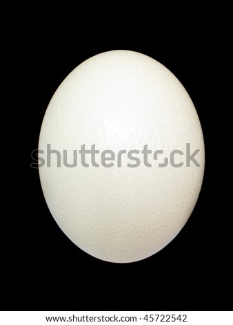 An ostrich egg isolated on a black background - stock photo