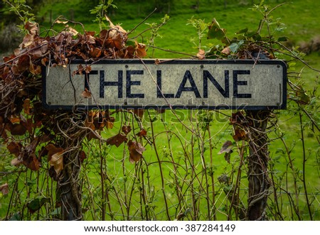 An Overgrown Rural Sign For The Lane - stock photo