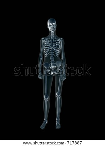 Anatomically correct Xray, x-ray of the human female body, woman. 3D render, illustration over black.  View from front. Different body parts can be requested via forum. - stock photo