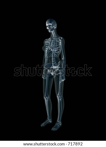 Anatomically correct Xray, x-ray of the human female body, woman. View from right. 3D render, illustration over black.  Different body parts can be requested via forum. - stock photo