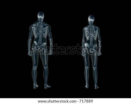 Anatomically correct Xray, x-ray of the human male body, man and woman. 3D render, illustration over black. View from back.  Different body parts can be requested via forum. - stock photo