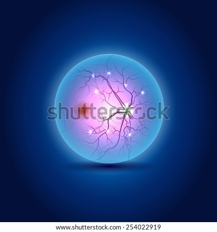 Anatomy of the interior surface of the eye, beautiful blue design - stock photo
