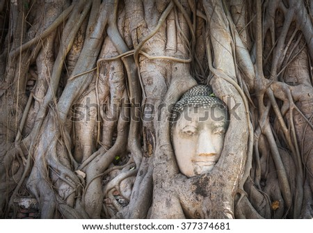 Ancient buddha head in banyan tree roots with little of sunlight at Ayutthaya, Thailand