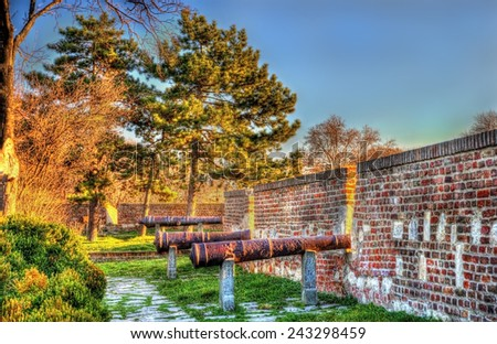 Ancient cannons at Belgrade Fortress - Serbia - stock photo
