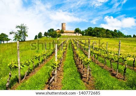 Ancient castle and vineyard on a hill in Germany - stock photo