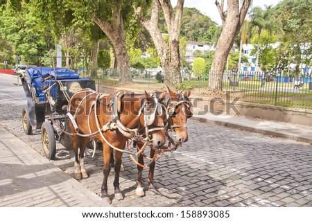 Ancient chariot - Petropolis - Rio de Janeiro - Brazil - stock photo