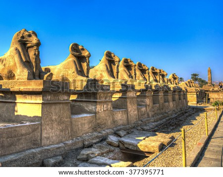 Ancient Egyptian sphinxes with head of Ram in Luxor, Egypt