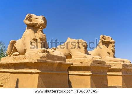 Ancient egyptian statues of Ram-headed sphinxes in Karnak temple, Luxor - stock photo