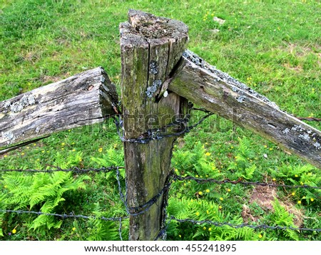 ancient fence with barb wire - stock photo