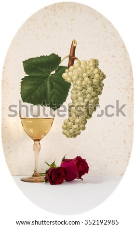 ancient glass of  wine background grape cluster decorated, romantic moment with flowers rose ,cutout photo, natural light, vertical photo - stock photo