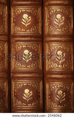 Ancient leather bound book - stock photo