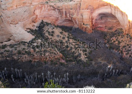 Ancient ruins of pre-historic Indian cultures of American southwest and surroundings, Navajo National Monument - stock photo