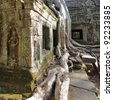 Ancient ruins of Ta Prohm temple at the Angkor, Cambodia - stock photo