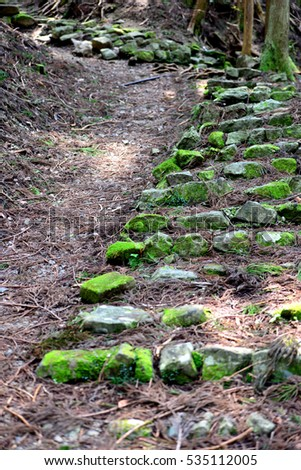 Ancient steps at Kumano Kodo, the sacred historical pilgrimage route in Kansai, Japan