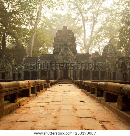 Ancient temples of Ta Prohm Temple, Angkor, Cambodia  - stock photo