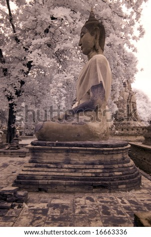 Ancient Thai History , Ayudthaya Historical Park, Thailand taken in Near Infrared