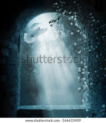 Ancient window and doves at night - stock photo