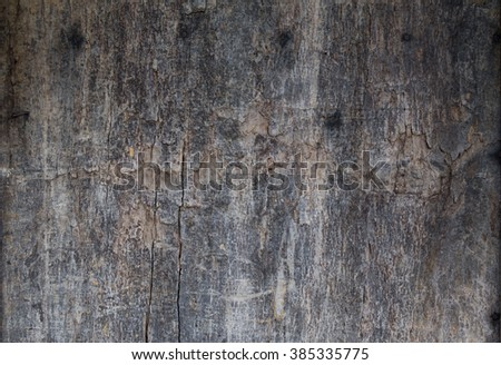 ancient wooden board, perfect grunge background - stock photo