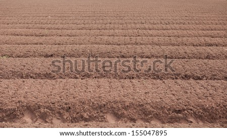 And Soil. - stock photo