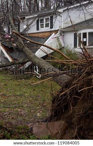 ANDOVER, NJ - OCT 30: An uprooted tree laying across the front porch of a home after Hurricane Sandy made landfall in the northeast region of the US in Andover, New Jersey on October 30, 2012. - stock photo