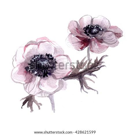 homoseksuelle billeder цветы № 8821
