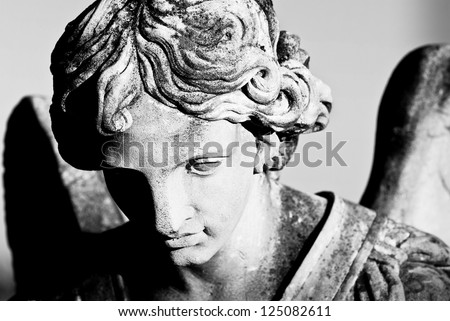 angel face - stock photo