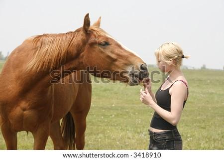 angel feeding horse apples - stock photo