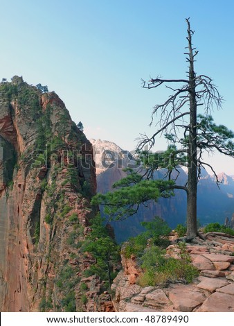 Angel's Landing - Zion National Park - stock photo