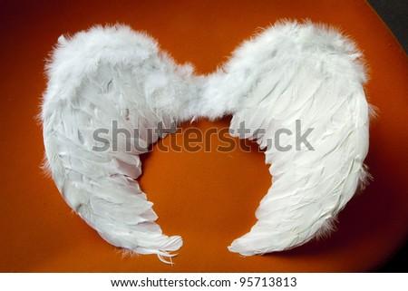 angel's wings on red velvet background - stock photo