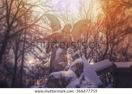 Angel statue illuminated by sunlight. Cemetery during the winter - stock photo