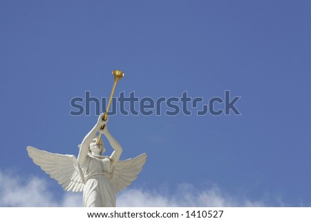 angel trumpeter - stock photo