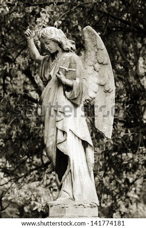 Angel with book - stock photo