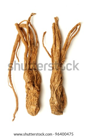 Angelica sinensis on a white background - stock photo